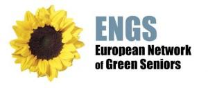Logo_ENGS